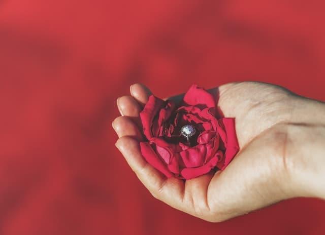 花をたむける女性の手の画像