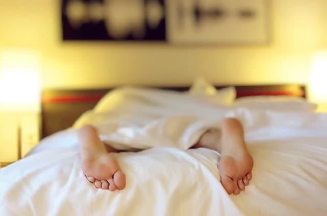 ベッドの上にうつぶせに寝ているサムネイル画像