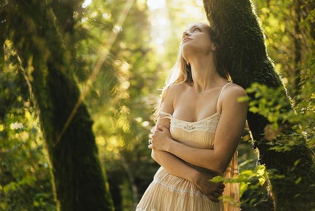 森の中で光ある方を見上げる女性の画像