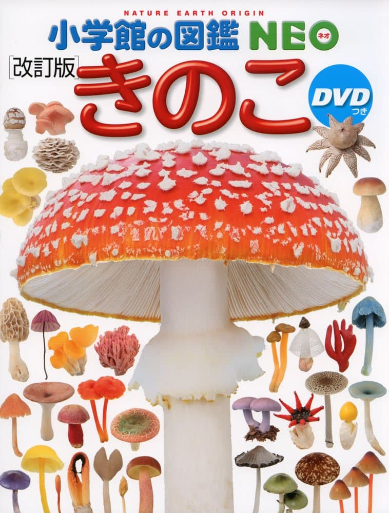 DVD付のきのこの図鑑の画像