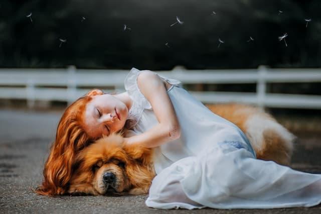 女王様と駄犬が寄り添う画像