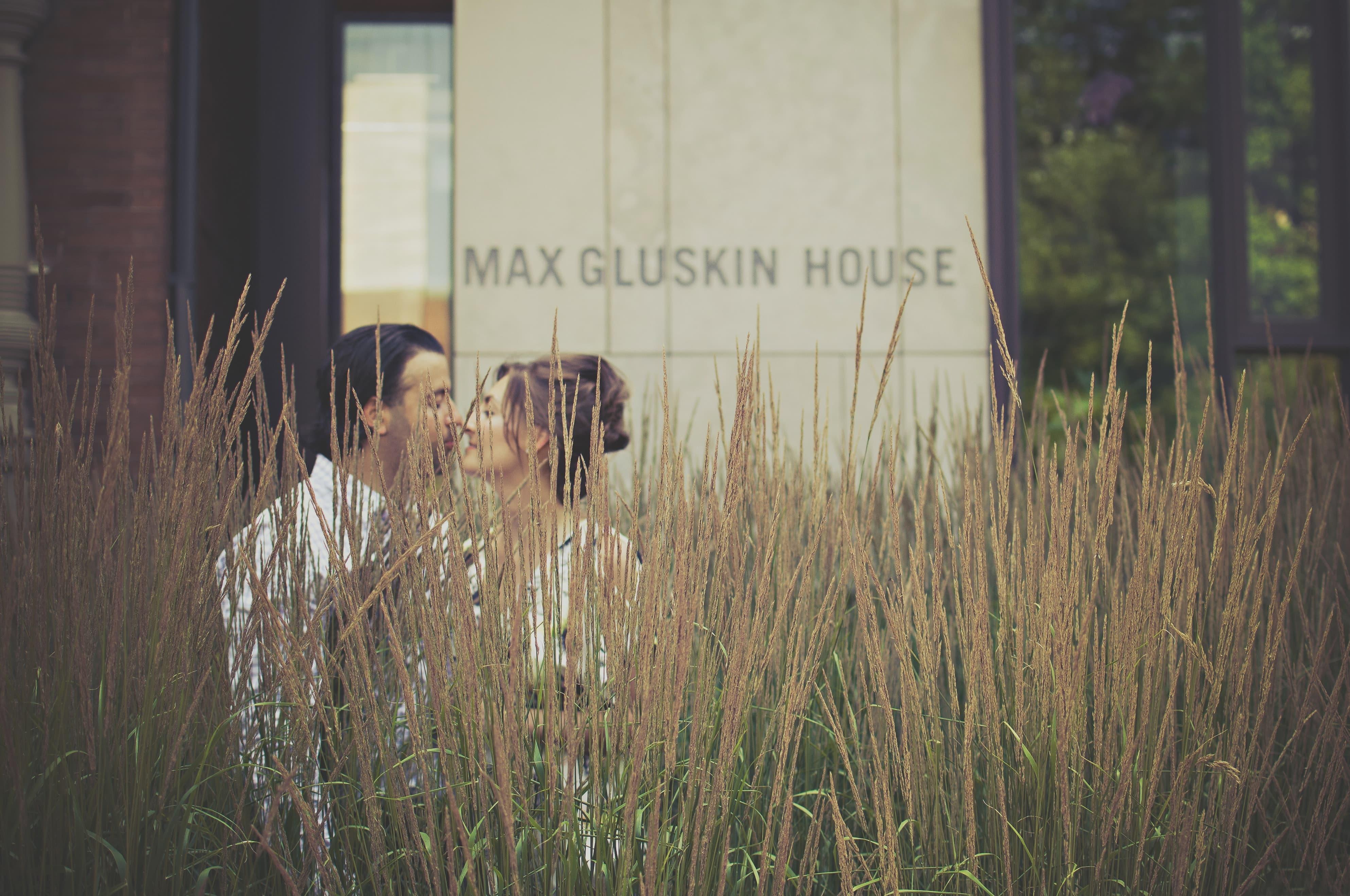 結婚したカップルが花畑を歩く画像