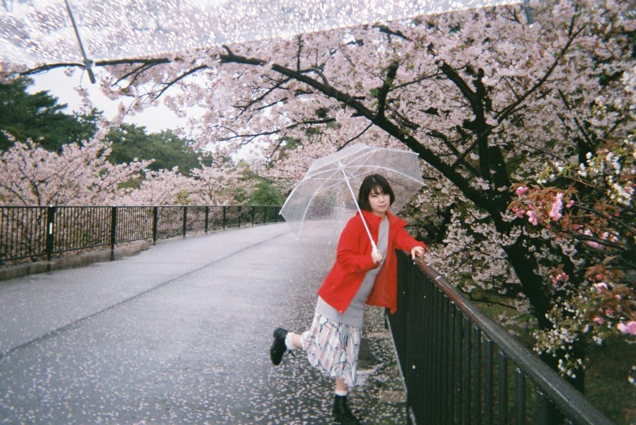 桜咲く木の下で写真に映る葭本未織さん