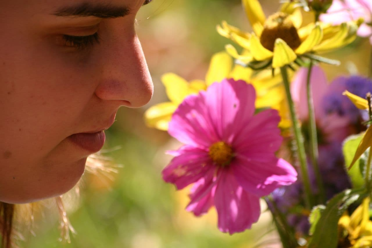 Aziel smelling Flowers By Loimere
