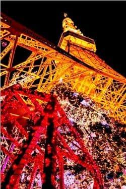 TOKYO TOWER クリスマスイルミネーション2012 東京タワー