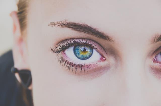 美しい青い瞳でこちらを見つめる東大院生のポルノグラフィ研究ノートのサムネイル画像