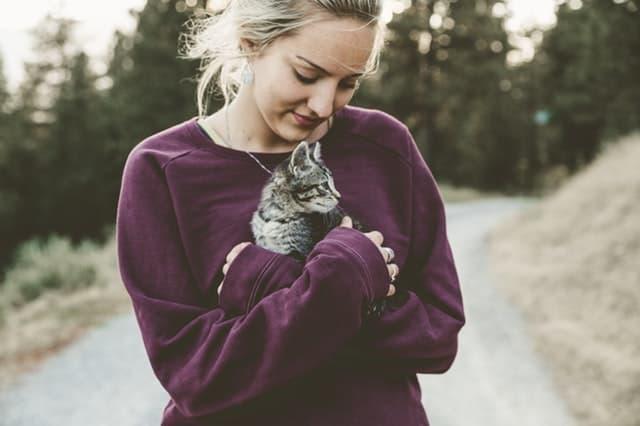 猫を抱き上げる女性の画像