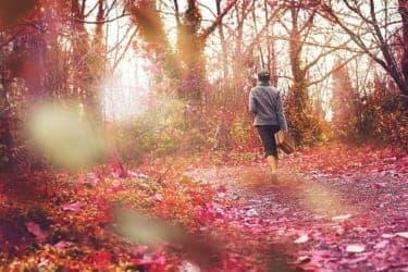 1人で歩む人生、誰かと一緒に歩む人生、それぞれの景色から感じること