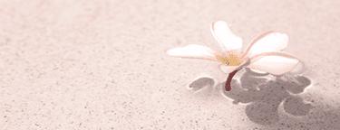 彩夏は大人の玩具を内部に仕込まれて…/固く小さく、震えてる『楽園の罠』(8)/AM官能小説