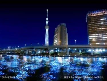 夜の隅田川が幻想的な光景に!『東京ホタル TOKYO HOTARU FESTIVAL 2012』