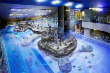 スカイツリーとあわせて訪れれば、東京の空と海を制覇!「すみだ水族館」