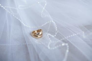 とっくに幸せな不安―真人間プロジェクトの話/カワウソの結婚