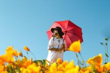 日傘を持たない女子は性に関して開放的!?夏の必需品に関する考察