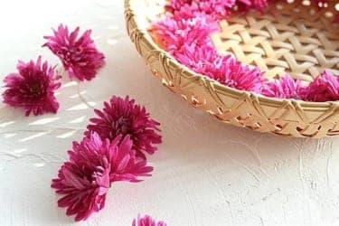 ふわっといい香りが立ち込める、秋の花「菊」を使った絶品酢の物