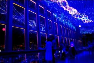 夜空に映る幻想的なイルミネーション!『東京タワー 天の川イルミネーション』