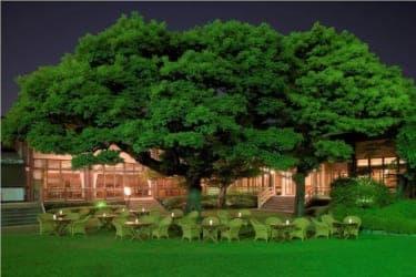 情緒たっぷりの歴史ある庭園でカンパイ! 明治記念館『ビアテラス 鶺鴒(せきれい)』