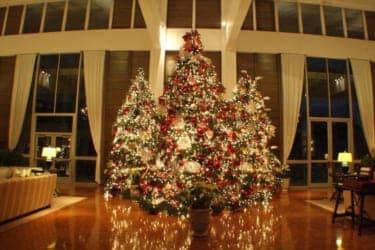 今年はハワイ・ホノルルでクリスマスを!
