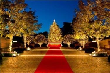 バカラ シャンデリアの高貴な輝き…『Baccarat ETERNAL LIGHTS ―歓びのかたち―』