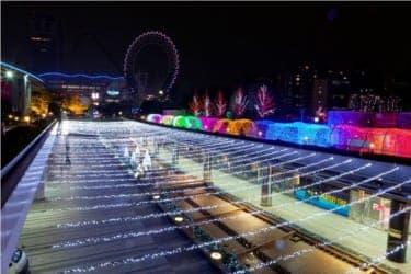 多彩な光の演出に包まれて……『東京ドームシティ LOVE イルミネーション』