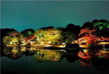 都内に隠れた紅葉の名所! 六義園『紅葉と大名庭園のライトアップ』