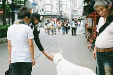 花やしき、競馬、焼酎…ディープな浅草デート/写真家・松藤美里撮り下ろし(5)
